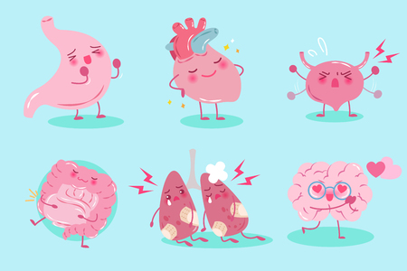 cute cartoon organ with health concept on the blue background
