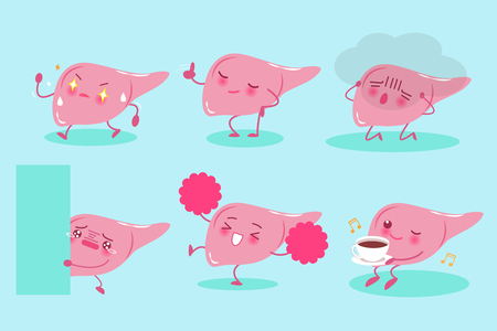 Cute cartoon liver on the blue background.