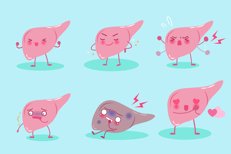 fibrosis: cute cartoon liver on the blue background