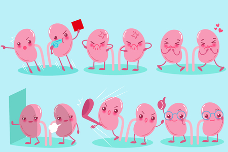 cute cartoon kidney on the blue background