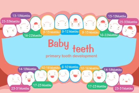 Tabella dente del bambino. Vettoriali