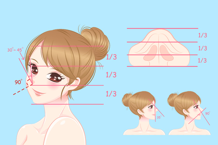 Woman with perfect face proportions blue illustration.