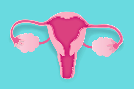 cute cartoon uterus on the blue background