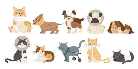 Muchos perros y gatos de dibujos animados heridos sobre el fondo blanco.