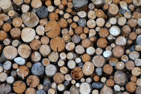 stack of firewood at the wall of a house Stock Photo