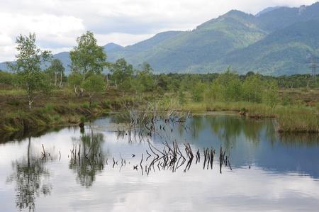 a highmoor near Grassau and Rottau in Bavaria