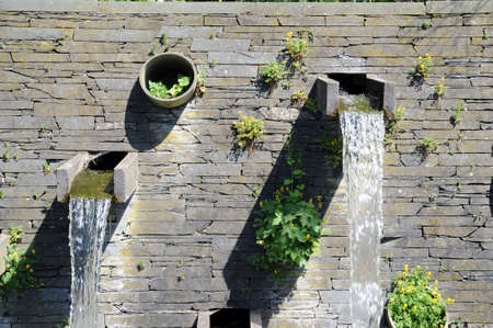 waterspout outdoor with a lot of plants and moss photo