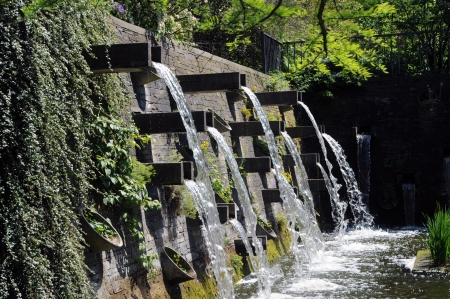 waterspount outdoors with a lot of plants and moss Stock Photo - 16944259