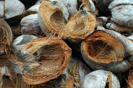 pile of smashed coconut shells Stock Photo - 21320248