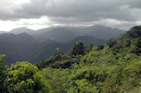 guantanamo: Rainy Day in the mountains of Sierra Maestra, Cuba
