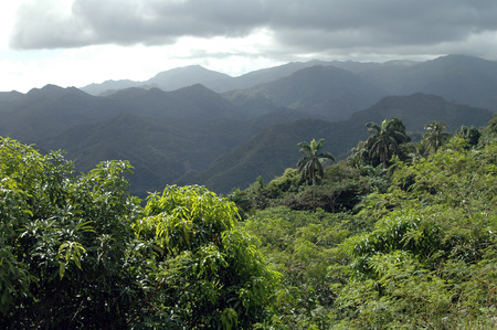Rainy Day in the mountains of Sierra Maestra, Cuba
