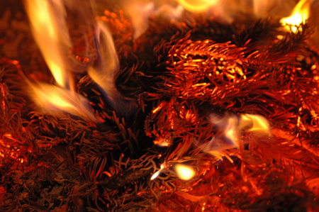 fir branches burning at a fireplace Stock Photo