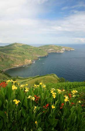 Azorean View