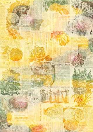 Collage of faded vintage botanical magazine