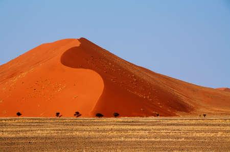 lonelyness: Duna Namib Stock Photo