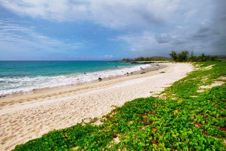 Playa de arena blanca de Makalawena en la Isla Grande de Hawai Foto de archivo - 24449913