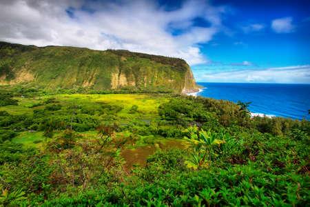Vista Waipio Valley en la isla grande, Hawaii Foto de archivo - 24450053