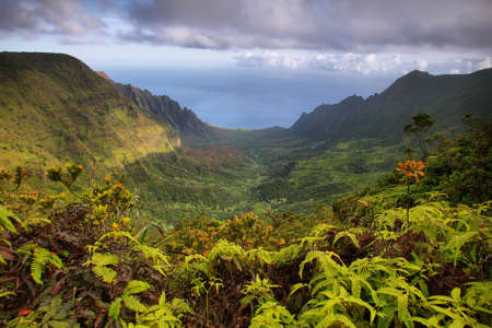 Majestic views of Napali coast from Kalalau lookout, Kauai island photo