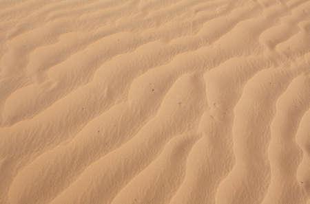 lake powell: Undulating sand texture in Lake powell recreational area