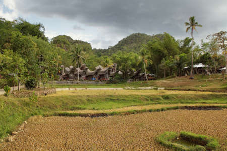 Village of Kete kesu  Toraja traditional village housing in Indonesia, Sulawesi photo