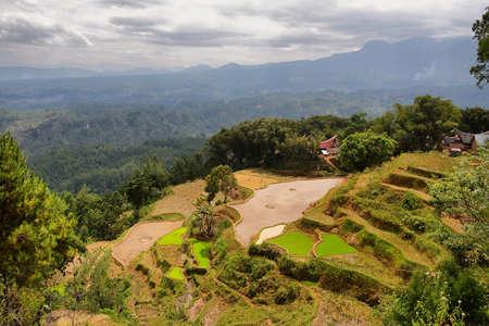 Village of Limbong  Toraja traditional village housing in Indonesia, Sulawesi Stock Photo - 25243028