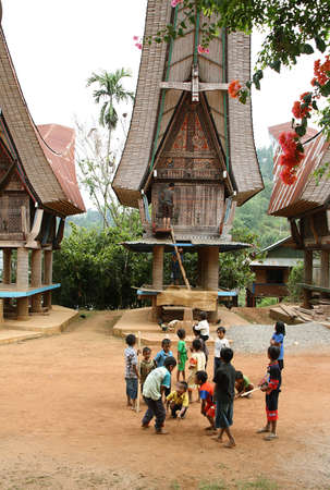 LIMBONG, INDONESIA - SEPTEMBER 13  Unidentified children playing outdoors on Sep 13, 2009 in Limbong, Sulawesi  Tana Toraja is home of Toraja minority ethnic group in South Sulawesi island, Indonesia Stock Photo - 25454831