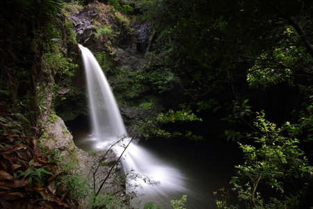 Small falls in Waimoku falls trail, Maui island, Hawaii photo
