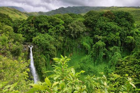 Makahiku falls view in Waimoku falls trail, Maui island, Hawaii