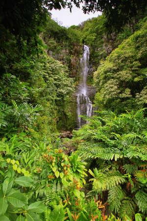 Wailua falls in east Maui island, Hawaii photo