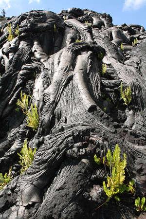 Textures of lava in Hawaii volcanoes national park, Big island, Hawaii 免版税图像
