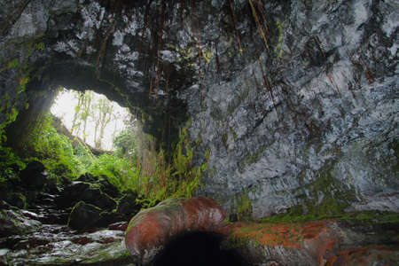 Entrance of one of two Kaumana caves in Big island, Hawaii photo