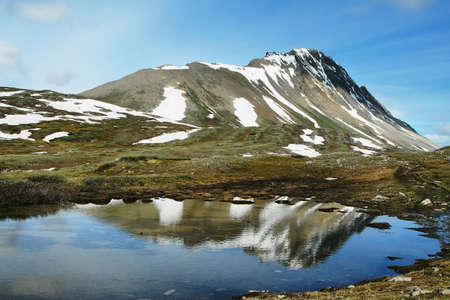 Small pond with mountain reflected in Wilcox Pass trail, Canada photo