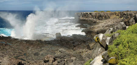 blowhole: View of cliffs and blowhole in La Espanola island, Galapagos, Ecuador