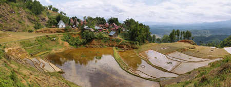 Panorama of Limbong village. Toraja traditional village housing in Indonesia, Sulawasi photo