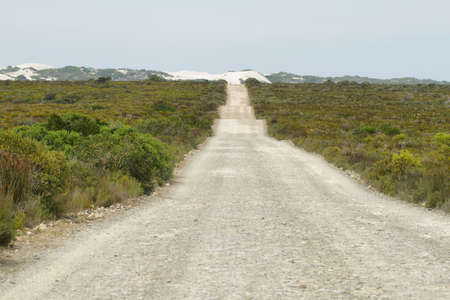 south africa soil: Dirt road in De hoop nature reserve, South Africa