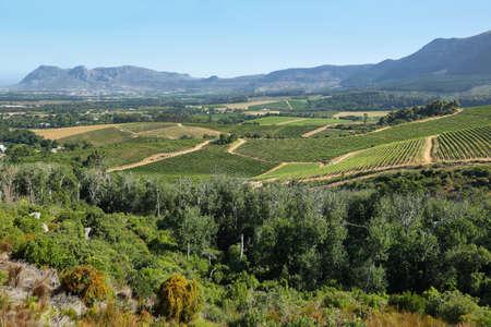 Berglandschaft in Constantia Tal, Südafrika Standard-Bild - 41381784