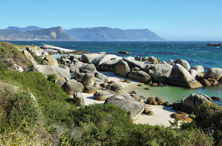 cape town: Boulders beach in Cape peninsula, South Africa