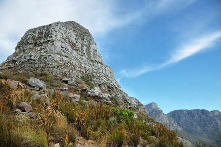 capetown: View of Lions Head  peak from the base of the mountain, Cape Town, South Africa Stock Photo
