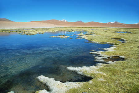 high plateau: Quepiaco lagoon known as Vegas de Quepiaco in Atacama desert, Chile Stock Photo