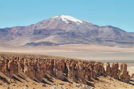 tara: Desert landscape on the way to Salar de Tara, El Loa province, Chile