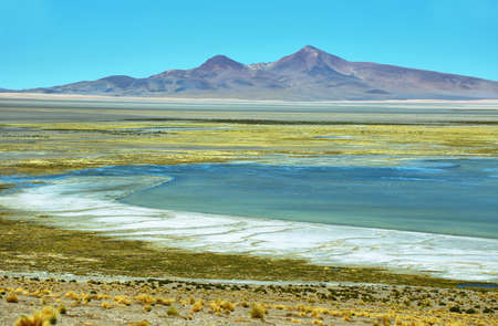 tara: View of Salar de Tara with mountains at background, Chile
