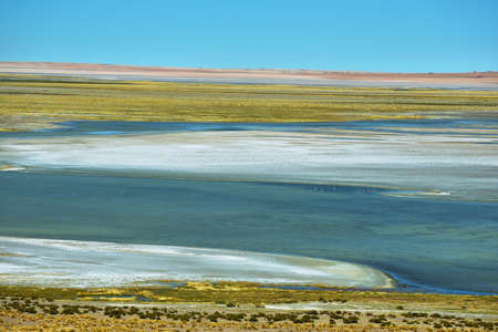 high plateau: View of Salar de Tara, Chile