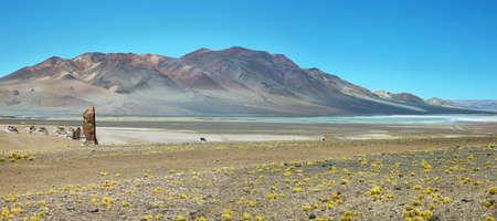 high plateau: Geological monolith Known as Monjes de la Pakana and Salar Aguas Calientes, Atacama desert, Chile Stock Photo