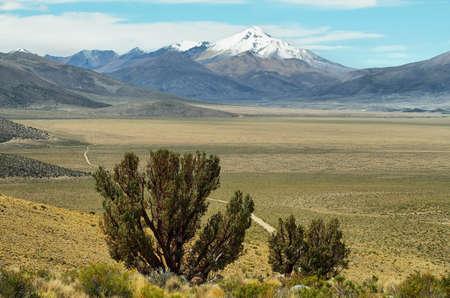high plateau: Mountains and high plateau plains near volcano isluga national park, Chile