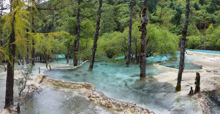 turquoise water: Bonsai Pond in Huanlong scenic Area, Unesco world heritage site in Sichuan Province, China