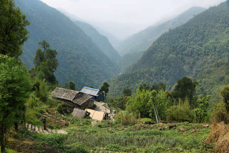 SINUWA, NEPAL - APRIL 18, 2016: Plantation fields and small wooden houses from Sinuwa in Annapurna base camp hiking trail, Nepal