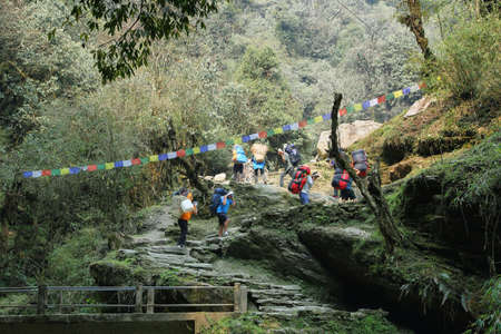 uphill: BANTHANTHI, NEPAL - APRIL 12, 2016: porters carrying heavy bags uphill in Annapurna base camp hiking trail, Nepal Editorial