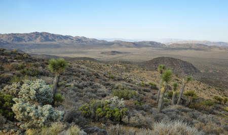 Mojave Desert vista from Ryan Mountain in Joshua Tree National Park, California, USA Stock Photo