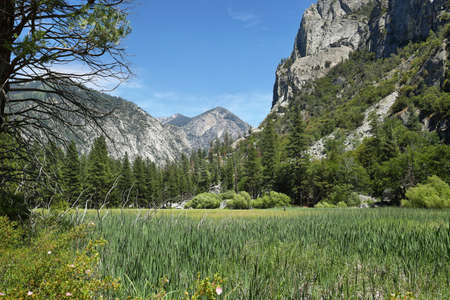 kings canyon national park: Zumwald meadows in Kings Canyon National Park, California