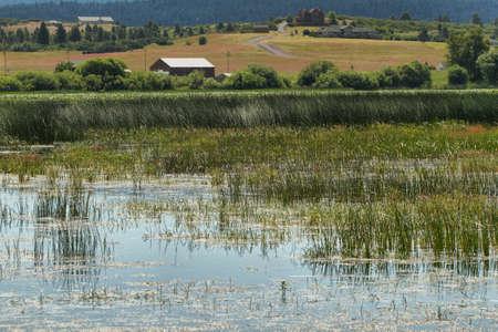klamath: Upper Klamath National Wildlife Refuge, Oregon Stock Photo